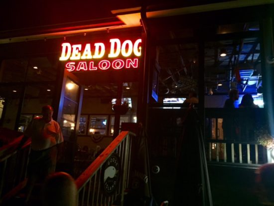 Dead dog saloon at night