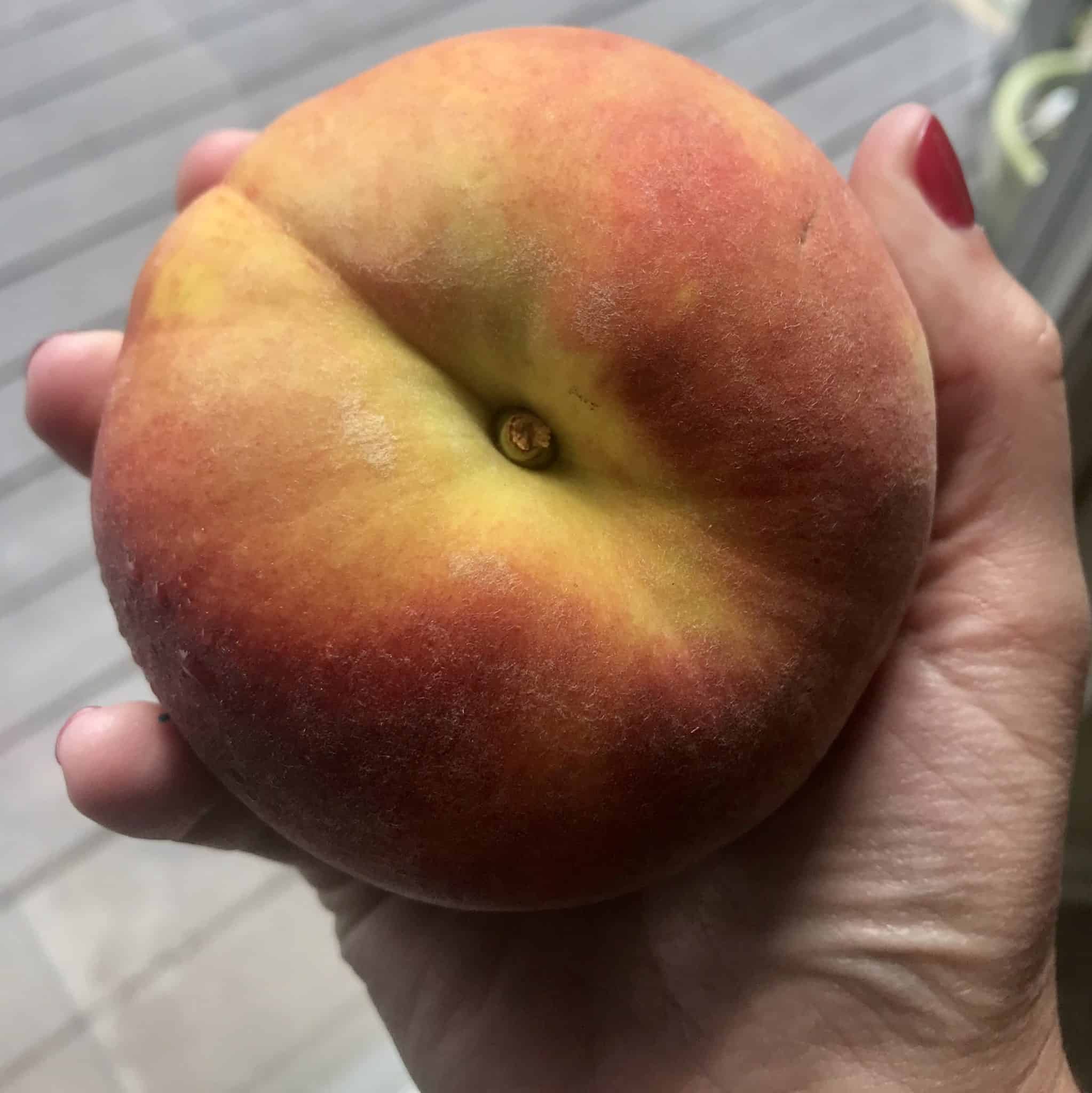 Close up view of huge peach in hand
