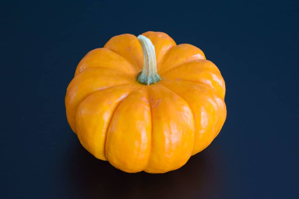 a miniature pumpkin on a black background